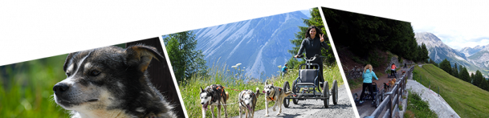 escursioni e trekking estive con gli husky