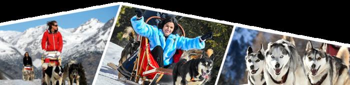 escursioni invernali con gli husky