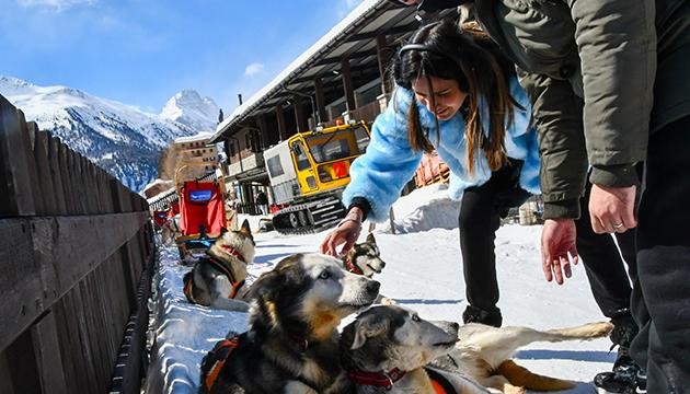 conoscenza degli husky prima dello sleddog in Valtellina