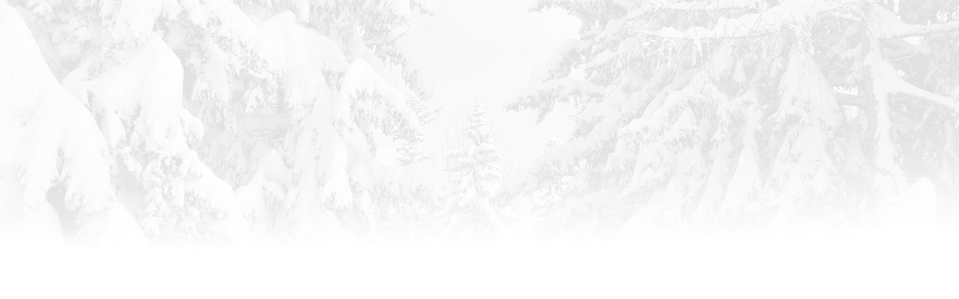 sfondo innevato husky village